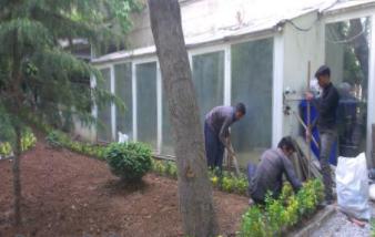 خدمات باغبانی
